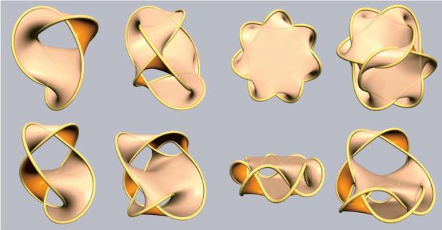 1Seifert surface knot